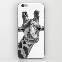 Giraffe | Peek-A-Boo | Animal Photography | Minimalism | Mammal | Wildlife | Nature iPhone Skin