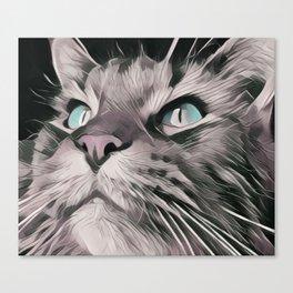 dream cat, chat, fantastic, magic, action Canvas Print