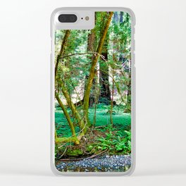 Muir Woods Study 11 Clear iPhone Case
