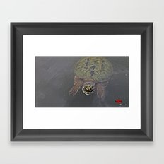 Turtle Attitude 1 0f 2 Framed Art Print