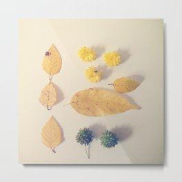 Yellow Autumn Collection Metal Print