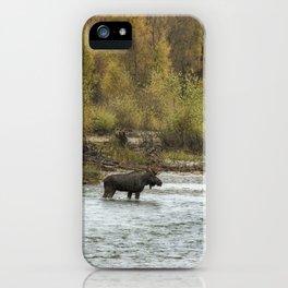 Moose Mid-Stream - Grand Tetons iPhone Case