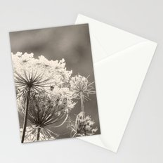 Lace in the Meadow BW II Stationery Cards