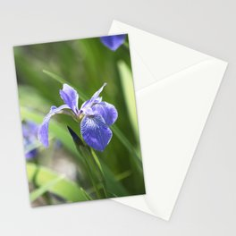 Longwood Gardens - Spring Series 234 Stationery Cards