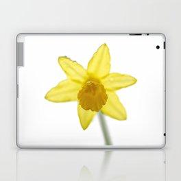 Daffodil I Laptop & iPad Skin