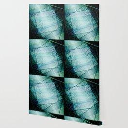 ABS#34 Wallpaper
