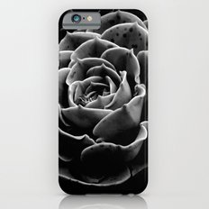 Succulents in the Shadows iPhone 6s Slim Case