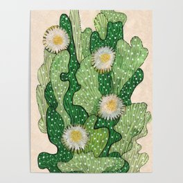 Blooming cactus, white & green, floral art Poster