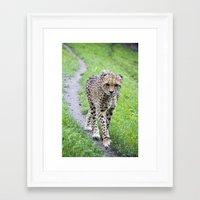 jaguar Framed Art Prints featuring Jaguar by Veronika