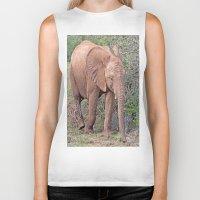 baby elephant Biker Tanks featuring Baby Elephant by Lynn Bolt