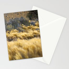 Windy Pampa Gold Herb Stationery Cards