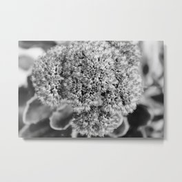 Surround The Air With Little Pieces Of Art Metal Print