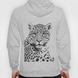 Cheetah Sketch Hoody