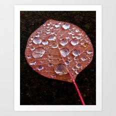 Fall Dew Art Print