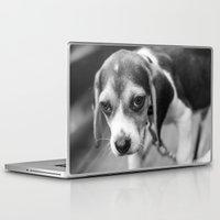 puppy Laptop & iPad Skins featuring Puppy! by Clayton Jones