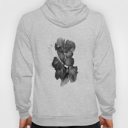 Black Geranium in White Hoody