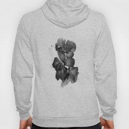 Black Geranium in White Hoody