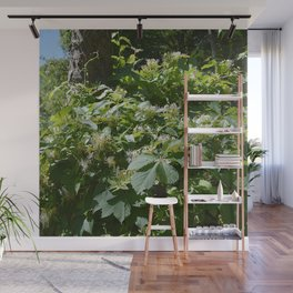 abundant honeysuckle  Wall Mural