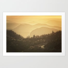 Black Balsam Sunrise  Art Print