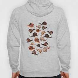 A Slew Of Snails Hoody