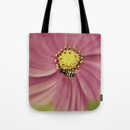 Hoverfly in the Pink Tote Bag