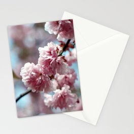 Soft Spring Stationery Cards