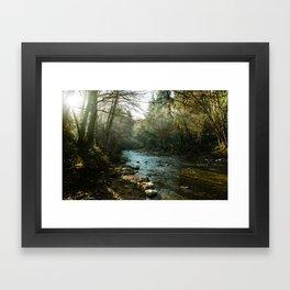 morning light in big sur Framed Art Print