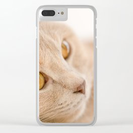 Dreaming cat Clear iPhone Case