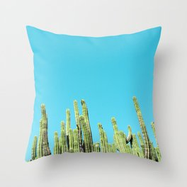 Desert Cactus Reaching for the Blue Sky Throw Pillow