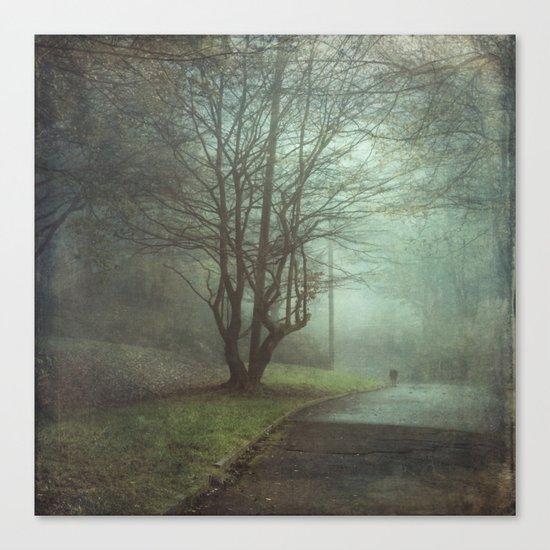 stEEl daWn Canvas Print
