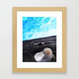 Shellski Framed Art Print