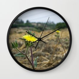 Sonchus asper Wall Clock