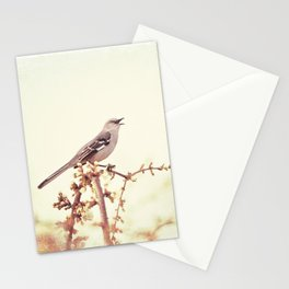 Mockingbird Bird Photography, Mocking Bird on Tree Branch, Nature Photograph Stationery Cards
