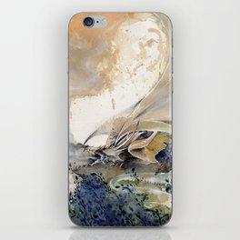 Forgotten Dream iPhone Skin