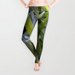 water and greenery Leggings