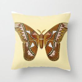 Butterfly Painting Throw Pillow