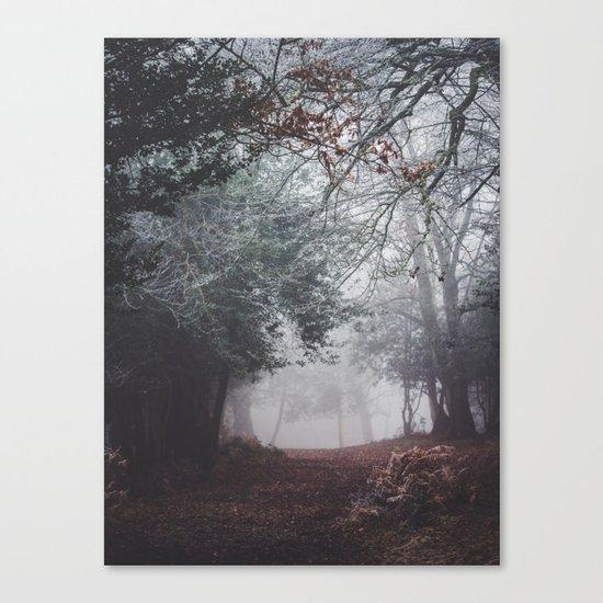 Frosty path Canvas Print