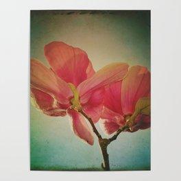 Vintage Spring Flowers Poster