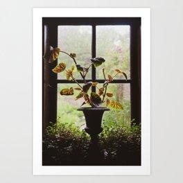Rainy Silhouette Art Print
