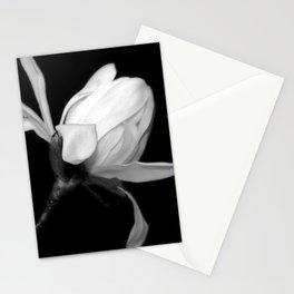 Magnolia Bud Stationery Cards