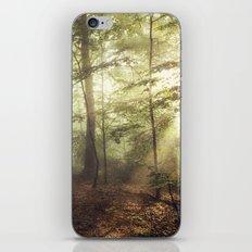 german rain forest iPhone & iPod Skin
