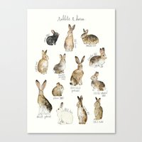 rabbits Canvas Prints featuring Rabbits & Hares by Amy Hamilton
