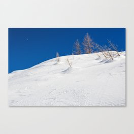 Blue sky and white snow Canvas Print