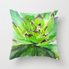 green succulent 3 Throw Pillow