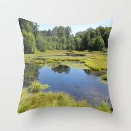 Billy J. Frank Nisqually National Wildlife Refuge, Reflection Throw Pillow