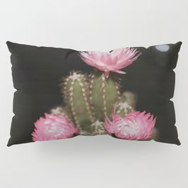Pink Cactus Pillow Sham