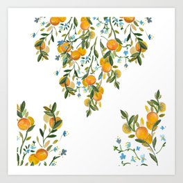 A Bit of Spring and Sushine Trailing Oranges Art Print