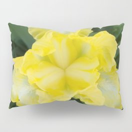 Yellow Iris by Teresa Thompson Pillow Sham