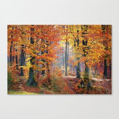 Colorful Autumn Fall Forest Canvas Print