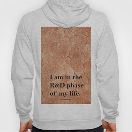 R&D phase of my life Hoody